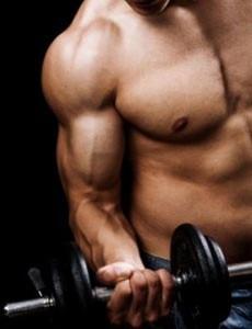 bíceps e halter