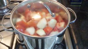 molho de tomate caseiro 5
